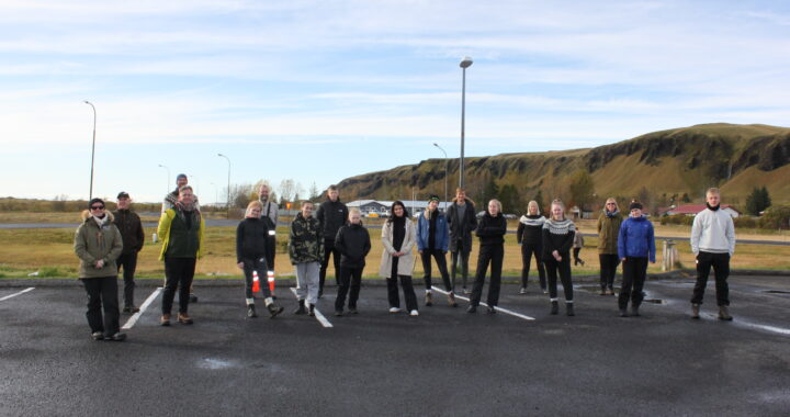 The Icelandic part of the Geoheritage group 2020.